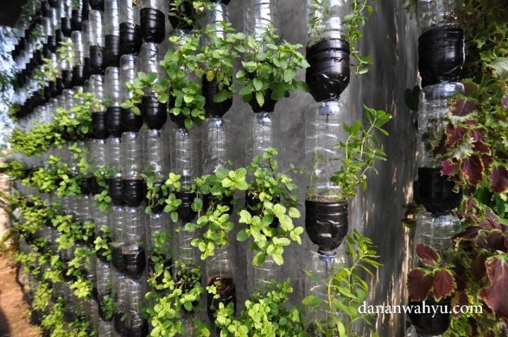 taman vertikal memanfatkan botol air mineral bekas