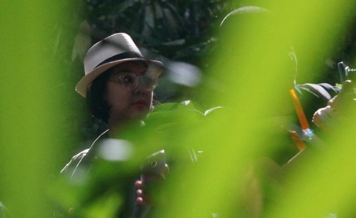 Menyelinap di antara belantara untuk melihat Bunga Rafflesia