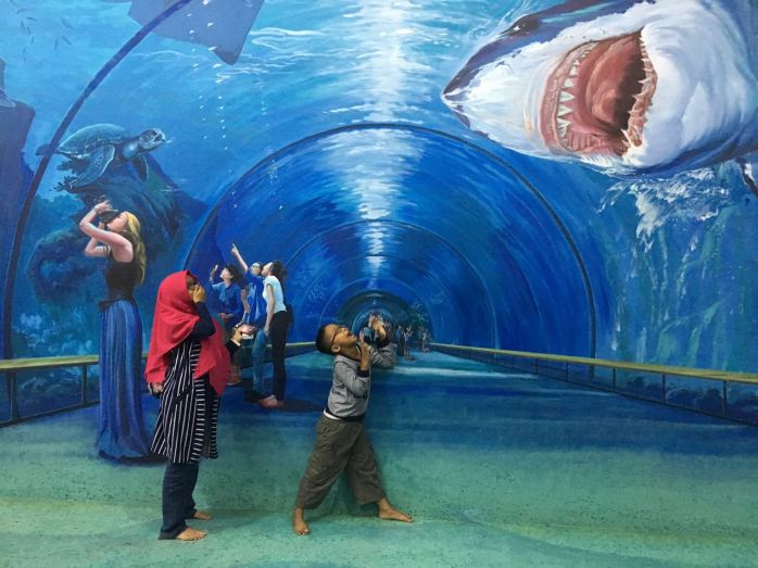 Awas ada ikan hiu!